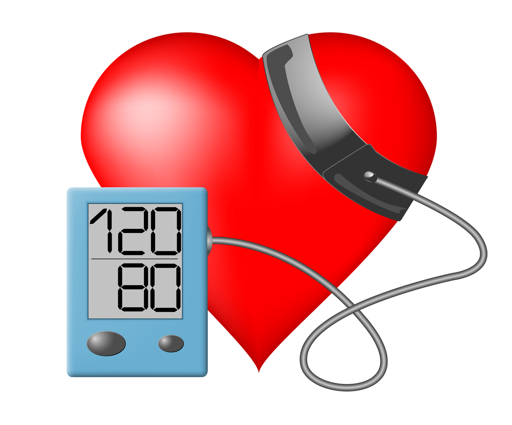hypertension blood pressure check If you measure for high blood pressure, your health care provider may order other  tests to check for organ damage webmd explains.